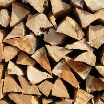 firewood Deux-Sèvres 79 BNE